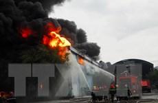 TP.HCM: Cháy dữ dội ở kho hàng Công ty nệm Vạn Thành