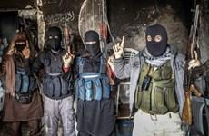 Nghi phạm al-Qaeda gốc Việt bị kết án 40 năm tù giam tại Mỹ