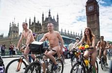 Hàng trăm người đạp xe khỏa thân để phản đối văn hóa xe hơi