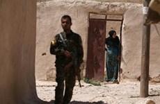 Syria: Liên quân tấn công Manbij, hàng chục ngàn người mắc kẹt