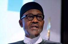 Quân đội Nigeria bác bỏ tin đồn âm mưu lật đổ Tổng thống Buhari