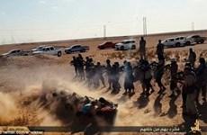 Các tay súng nhóm khủng bố IS hành quyết 24 dân thường Syria