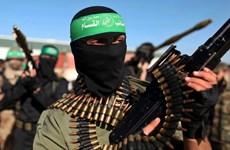 Palestine: Phong trào Hamas dọa tẩy chay bầu cử địa phương