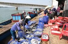 VASEP: Formosa phải có trách nhiệm với doanh nghiệp xuất khẩu thủy sản