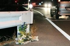 Gây tai nạn chết người vì vừa lái xe vừa chơi Pokemon Go