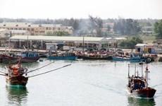 Thảo luận 4 phương án khai thác hải sản tại 4 tỉnh miền Trung