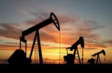 Nga xem xét khả năng cung cấp dầu mỏ thường xuyên cho Cuba