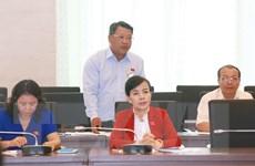 Đại biểu Quốc hội: Vẫn mù mờ giữa hội và tổ chức phi Chính phủ