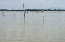 Khởi tố đối tượng đánh cán bộ kiểm lâm làm nhiệm vụ trên hồ Trị An