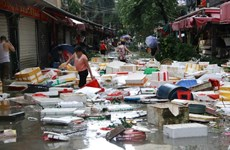 Bão Malakas sắp ập vào Trung Quốc, sức gió lên đến 180 km mỗi giờ