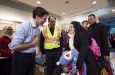 Canada tiếp nhận 31.000 người tị nạn Syria trong chưa đầy 1 năm