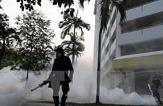Virus Zika đã xuất hiện tại 73 nước và vùng lãnh thổ trên thế giới