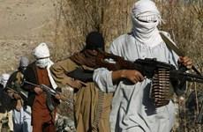 Chính quyền Pakistan bắt giữ 3 thủ lĩnh Taliban người Afghanistan