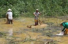 Quảng Trị, Thừa Thiên-Huế khắc phục hậu quả của áp thấp nhiệt đới