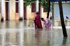 [Photo] Đường phố biến thành sông, người miền Trung bắt cá tại nhà