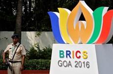 BRICS phối hợp chống nạn rửa tiền, tham nhũng và khủng bố