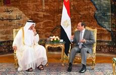 Thái tử UAE nỗ lực dàn xếp bấp đồng giữa Ai Cập và Saudi Arabia