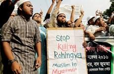 Người Rohingya biểu tình trước Đại sứ quán Myanmar ở Thái Lan