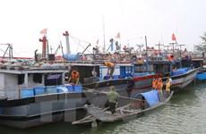 Tàu cá Việt Nam vào trú bão số 9 tại một số quần đảo Philippines