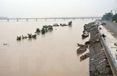 Quảng Ngãi đã có 10 người chết và mất tích vì mưa lũ kéo dài