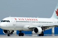 Máy bay Air Canada trượt khỏi đường băng vì bánh trước quấn cỏ