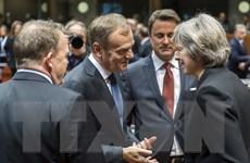 Hội nghị thượng đỉnh Liên minh châu Âu khép lại một năm đầy khó khăn