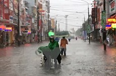 Các tỉnh từ Quảng Ngãi đến Ninh Thuận có mưa to, lũ đang lên