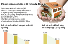 [Infographics] Gói 30.000 tỷ đồng đã được giải ngân gần hết