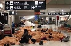 Tuyết rơi dày kỷ lục gây hỗn loạn hệ thống giao thông Nhật Bản