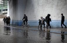 Việt Nam viện trợ hàng hóa cho Triều Tiên khắc phục hậu quả lũ lụt