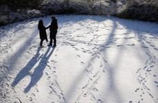 Khu vực Đông Nam nước Mỹ chuẩn bị đón trận bão tuyết lớn