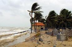 Thử nghiệm phương án làm kè mỏ hàn chống sạt lở bờ biển Cửa Đại