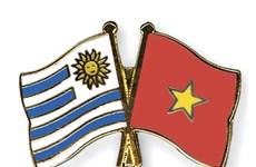 Khai trương Văn phòng Lãnh sự quán Đông Uruguay tại TP.HCM