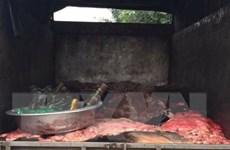 Bình Phước phát hiện 4 tấn da trâu, bò ướp muối không rõ nguồn gốc
