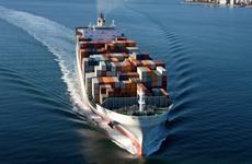 Kazakhstan chuyển ngũ cốc đóng nguyên container đến Việt Nam