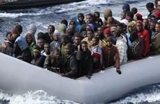 Italy sẽ tăng cường trục xuất những người nhập cư bất hợp pháp