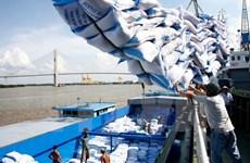 Phản hồi thông tin xin giấy phép xuất khẩu gạo tốn 20.000 USD