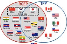 Đàm phán RCEP có thể chệch hướng nếu bổ sung thành tố trong TPP