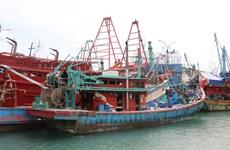Xác minh thông tin về 43 ngư dân Việt Nam bị bắt ở Solomon