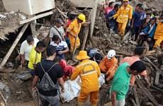 Chủ tịch nước thăm hỏi vụ lở đất và mưa lớn tại Colombia, Peru