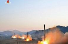 Chuyên gia Mỹ: Triều Tiên đang sở hữu 5.000 tấn vũ khí hóa học