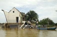 Liên hợp quốc cam kết hỗ trợ Việt Nam ứng phó với biến đổi khí hậu