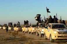 Mỹ đứng ngoài thỏa thuận giữa các lực lượng tại Syria với IS