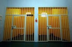 Một kỹ sư bị phạt tù và phải nộp 26 triệu đồng vì ngược đãi thú cưng