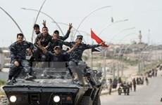 Quân đội Iraq đã giải phóng được khoảng 95% lãnh thổ Mosul