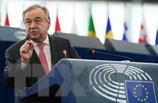 Tổng Thư ký LHQ kêu gọi cải cách lực lượng gìn giữ hòa bình