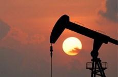 Nga: Giá dầu sẽ về mức 40 USD mỗi thùng vào đầu năm 2018