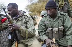 Phiến quân tấn công căn cứ quân sự ở Mali, bắt cóc nhiều người