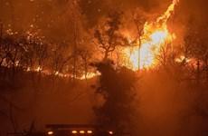 Cháy rừng nghiêm trọng, Mỹ triển khai 3.000 nhân viên cứu hỏa dập lửa