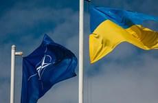 Ông Poroshenko: Ukraine tạm hoãn mục tiêu gia nhập NATO